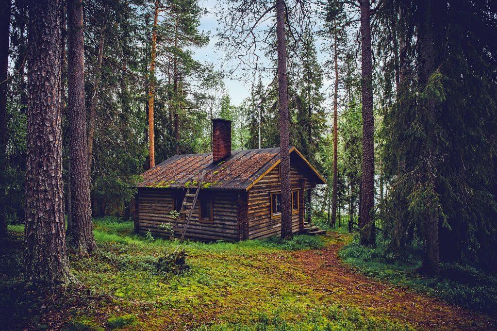 entretien d'une maison en bois